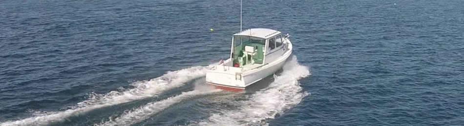 Cape May Fishing